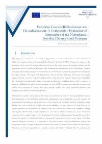 Европейская контр-радикализация и дерадикализация: сравнительная оценка подходов в Нидерландах, Швеции, Дании и Германии (Riazat Butt, Henry Tuck, ISD, 2014)