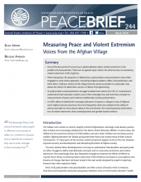 Измерение мира и насильственного экстремизма. Голоса из афганской деревни  (Belquis Ahmadi, Eliza Urwin, US Institute for Peace, 2018)